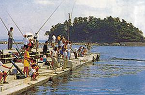 篠島釣り天国の様子