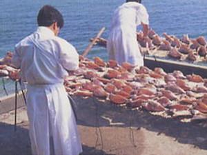 おんべ鯛の島